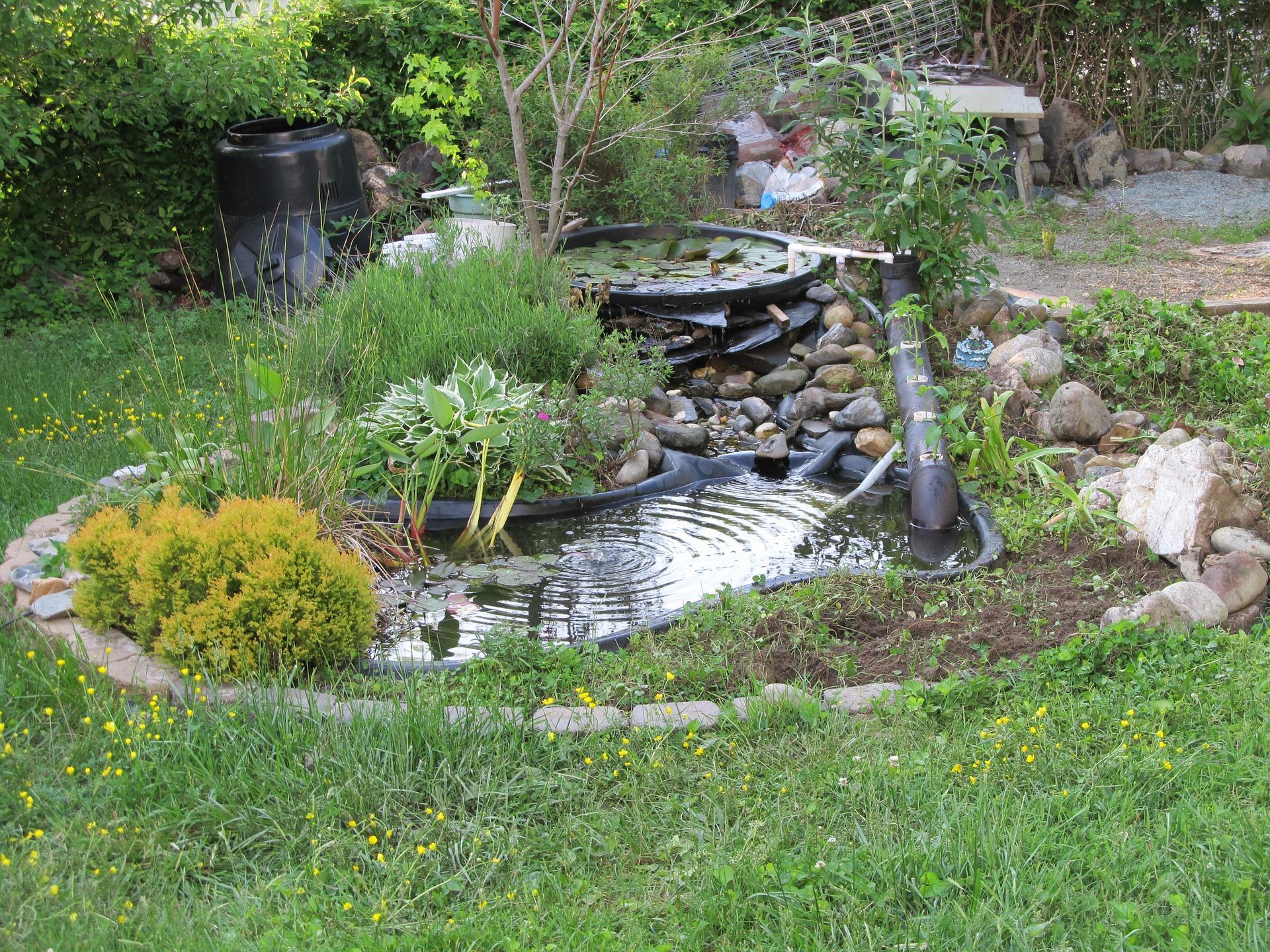 Стартиране на градинско езеро