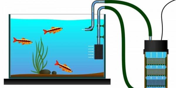 Видове филтрация в аквариума