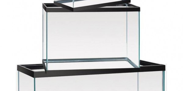 How to choose the correct size of the aquarium