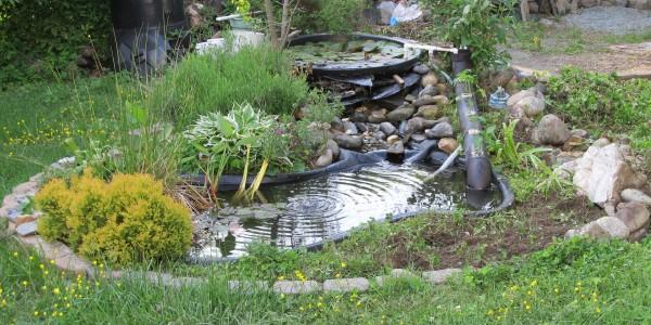 Стартирахте ли градинското езеро?