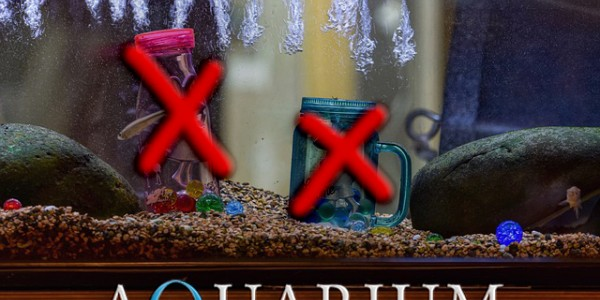 10 неща, които НИКОГА не трябва да слагате в аквариума
