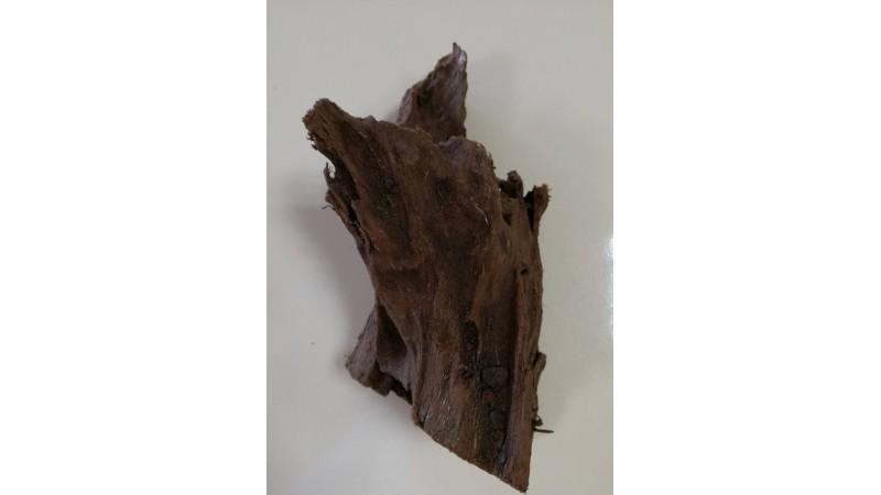 Mangrove root XL 1 piece