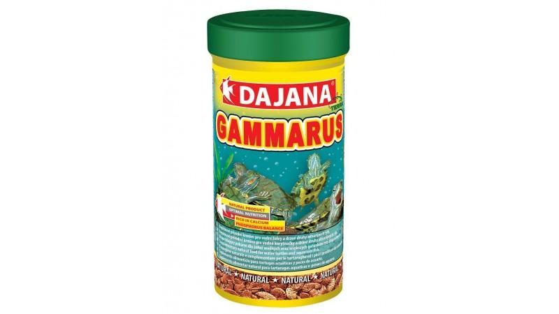 Dajana Pet Gammarus