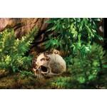 Exo Terra декорация за терариум Primate Skull