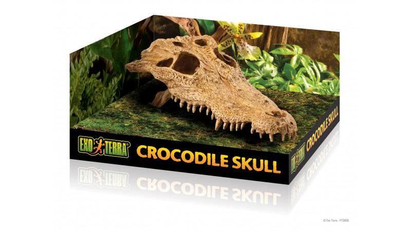 Exo Terra Skull decoration - декорация крокодил