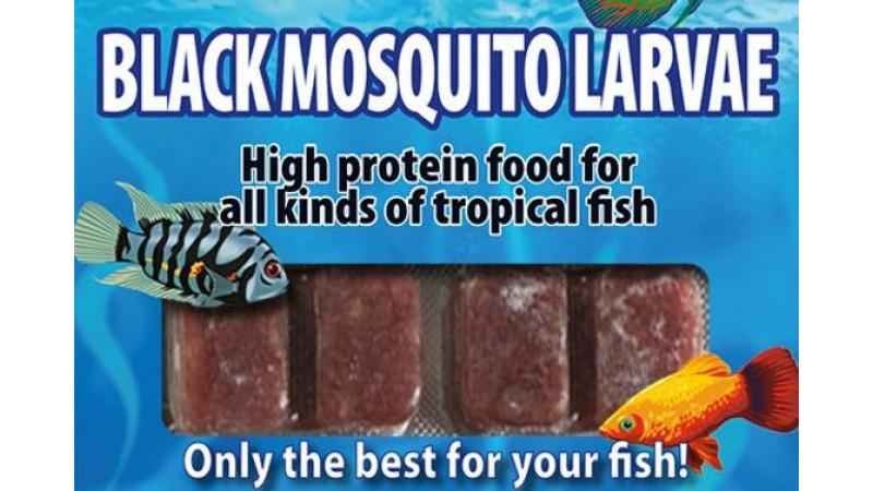 Frozen food Ruto Black mosquito larvaes  100g