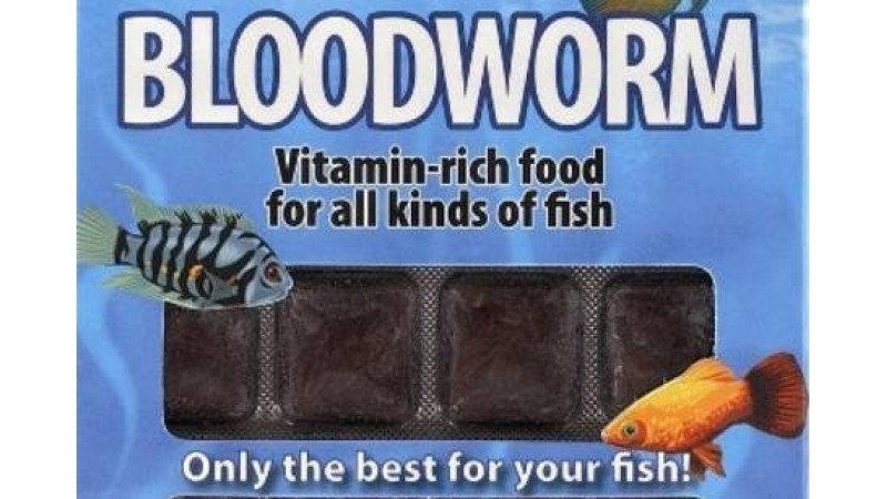 Замразена храна Ruto Bloodworm 100 g / 24 blisters