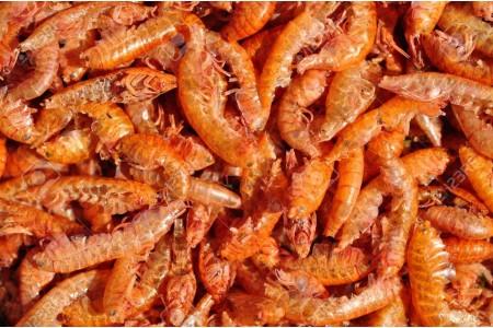 Замразена храна Ruto Gammarus 100 g