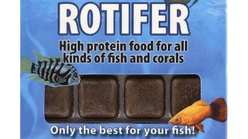 Frozen food Ruto Rotifer 100 gr