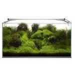 LED Lighting AquaEL Leddy Slim PLANT