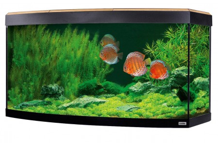 Aquarium Fluval  Vicenza LED 180