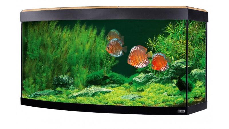 Aquarium Fluval  Vicenza LED 180