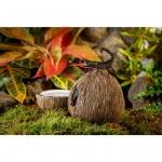 Exo Terra декорация кокос с купичка за вода