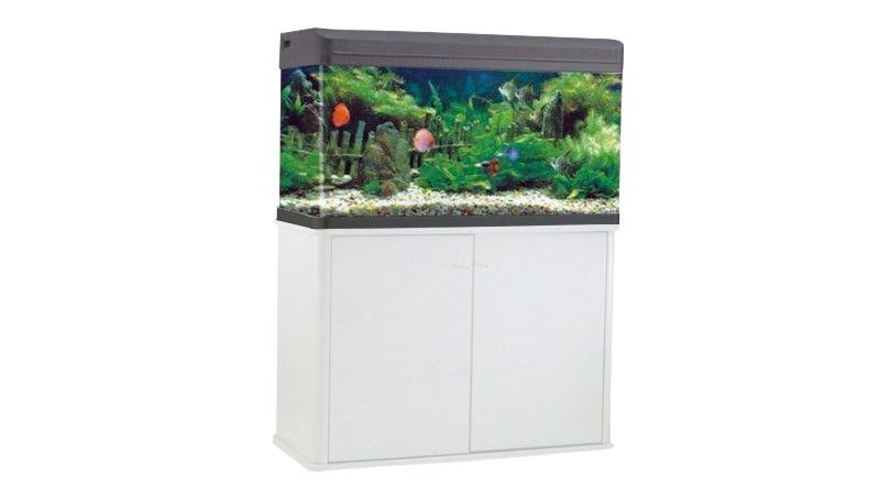 Aquarium RS-80B + 3 gifts
