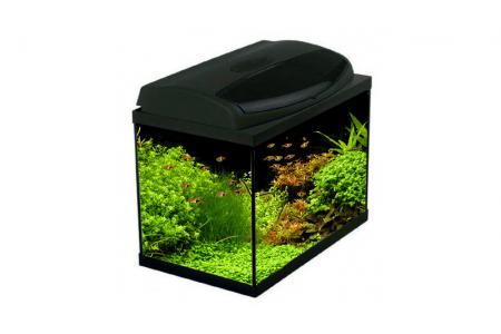 Аквариум Aquael Classic BOX 60 PROMO