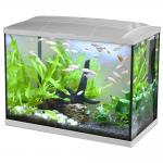 Aquarium Hailea K60 + 3 Gifts