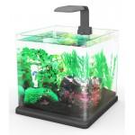 Aquarium Hailea Q15 +3 gifts