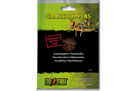Консервирана храна Exo Terra Grasshoppers