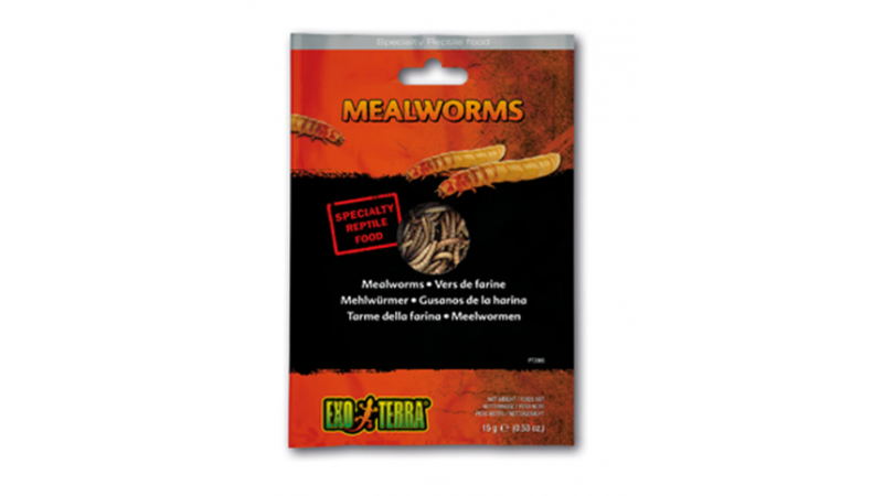 Canned Foods Exo Terra Mealworms