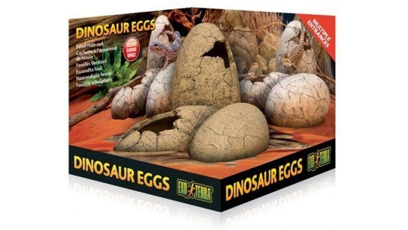 Exo Terra Dinosaur Eggs Fossil Hide Out