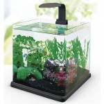 Aquarium Hailea Q-40 +3 gifts