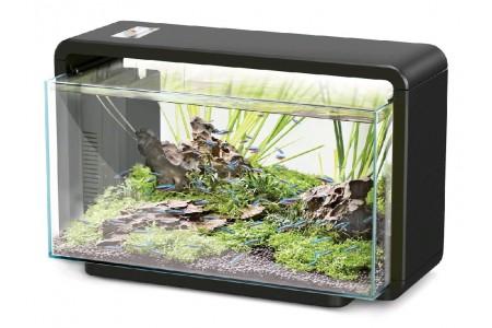 Aquarium Hailea E-40 +3 gifts