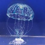 JBL MotionDeco Medusa XL Blue