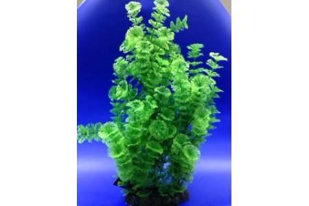 Tall plant aquarium decoration