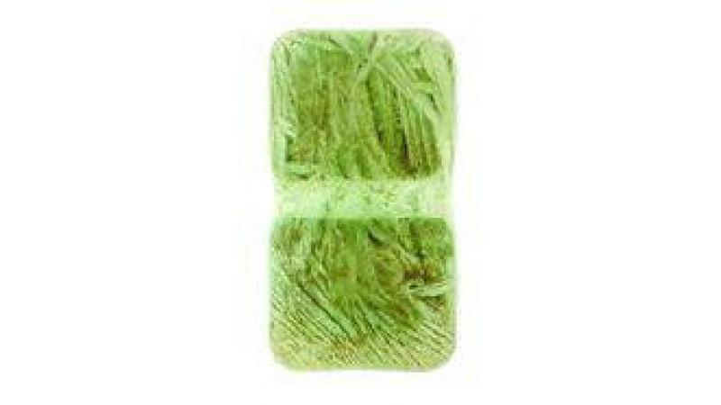 Micro Plankton 100 g blister