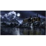 Фон за аквариум Hydor H2Show-magic world backround + gel