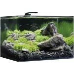 Aquarium Dennerle Nano Scapers Tank Basic 55L