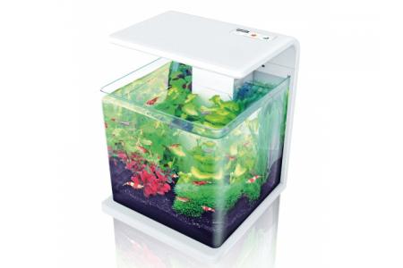 Aquarium Hailea E-30 +3 Gifts