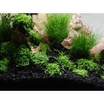 SeaChem Flourite Black ™ 0.5-2мм 3.5кг / 7кг