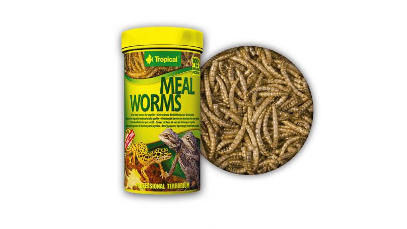 Сушени ларви от брашнен червей за влечуги Tropical Meal Worms 250мл./30гр.