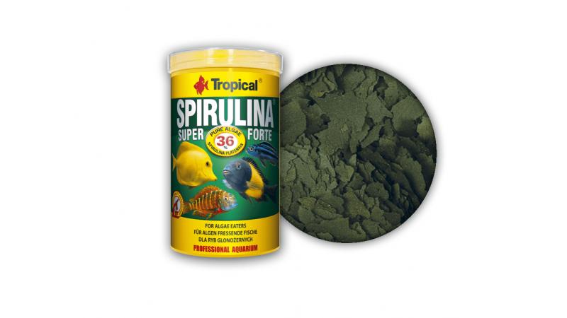 Tropical Super Spirulina Forte 36 %